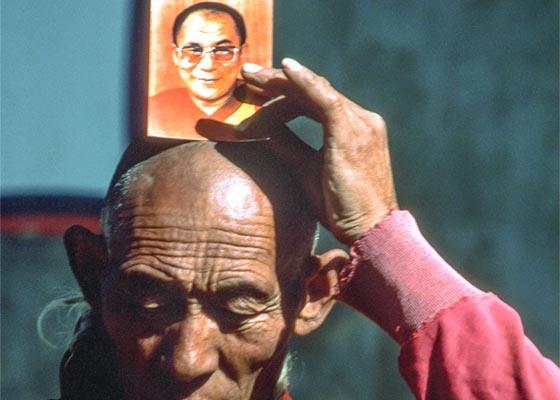 Die essenz des buddhismus - der weg der dich von allem leid befreit_blog
